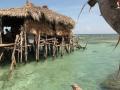 pelican-bar2